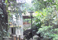 Cottage at Bamboo Grove Thekkady